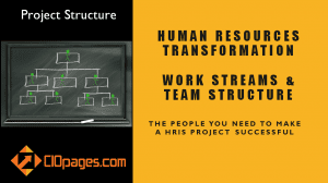 Human Resources Transformation Project Workstreams and Roles
